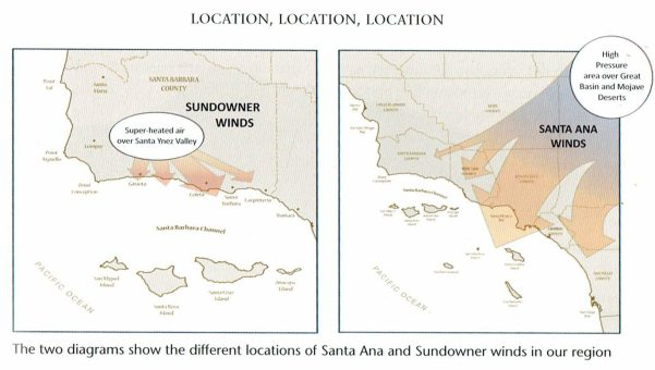 From: A Naturalist's Guide to the Santa Barbara Region by Joan Easton Lentz
